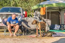 Camping With Dogs Top Tricks Tips Ingenia Holidays Byron Bay