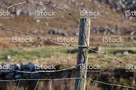 Barbed Wire Fence With Wooden Fence Post Stock Photo Download Image Now Istock