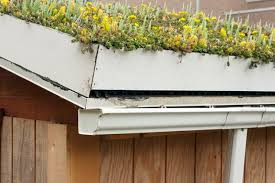 green roof make your home a natural