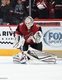 Adin Hill of the Arizona Coyotes prepares for a game against the... ニュース写真  - Getty Images
