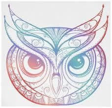 Divine Designs Beautiful Rainbow Ombre Henna Pattern Owl Drawing Vinyl Decal Sticker 4 Wide