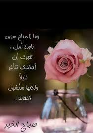 حور On Twitter صباح الخير