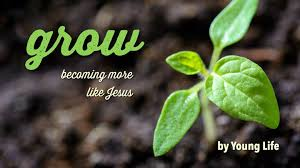 Grow: Becoming More Like Jesus | Devotional Reading Plan | YouVersion Bible