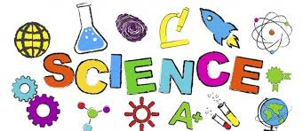 Miss Potter's Corner: Science Project