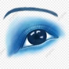 beauty eyelash eyeliner eye makeup