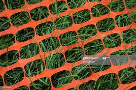 Collapsed Orange Plastic Safety Barrier Mesh On A Lawn High Res Stock Photo Getty Images