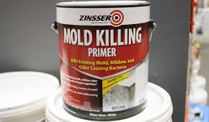 mold killing paint primer for interior