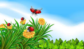 scene with ladybugs flying in the