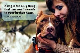 10 Dog Quotes That Show They Are Our ...