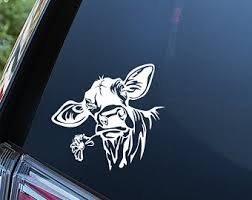 Cow Car Decal Etsy