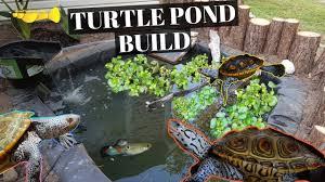 Ultimate Diy Turtle Pond Build Youtube