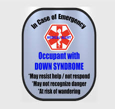 Down Syndrome Backpack Strap Car Seat Strap Cover Window Decal Set Safety Awareness Products