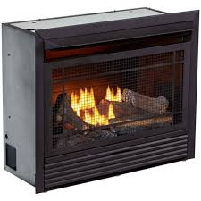 dual fuel ventless fireplace insert