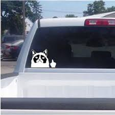 Baby Car Window Signs Decals Cute Funny Grumpy Cat For Jdm Auto Car Bumper Window Vinyl Decal Sticker Decal Damagehitter Com