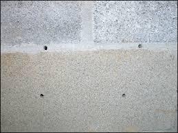 termite exit holes in drywall