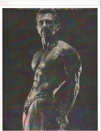 how i trained with vince gironda iron