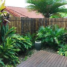 top 50 best bamboo fence ideas
