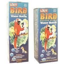 lixit pet glass water bottle 32 ounce