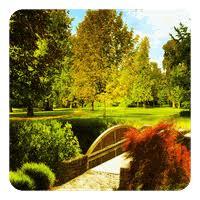 zen garden live wallpaper 7 5 free apk