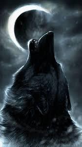 cool wolf iphone x wallpaper hd 2020