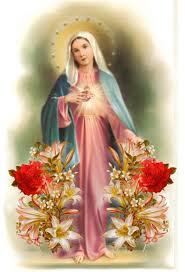 Lo Que Significa Soñar Con La Virgen Maria: Todo Lo Que Debes Saber