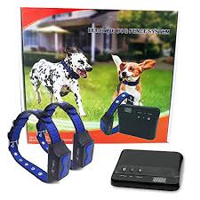 Floyd Invisible Electric Fence For Dogs Perimeter Fence Prevents Pets Escaping Easy To Use Maintenance Free Underground System All Inclusive For Quick Installation Superb Follow Up Support Pets Nerds