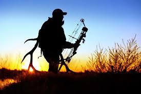 bow hunting archery archer bow arrow