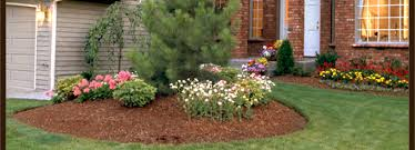 decorative bark products peat moss