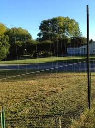 Fishing Line Deer Fence Update Maryland Grows