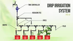 drip irrigation system for growing cans