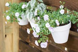 How To Hang Flower Pots Hanging Flower Pots On A Fence