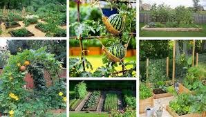 diy design ideas for a vegetable garden