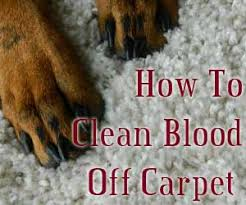 how to clean off carpet