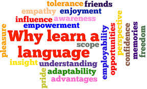 Image result for modern foreign languages""