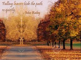 quotes about falling leaves quotes