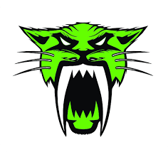Arctic Cat Green Vinyl Decal Sticker With Free Shipping All Sizes Greenback Wraps Com