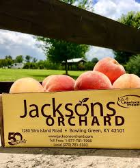 jackson s orchard bowling green