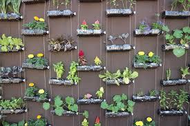 vertical garden ideas for small