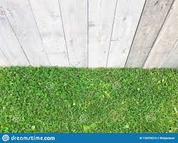 Lush Green Grass And Wooden Panel Fencing Stock Image Image Of Angle Panels 153378215