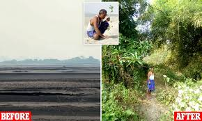 Jadav Payeng spent nearly 40 years creating a forest on Majuli, India    Daily Mail Online