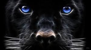 black jaguar hd wallpaper