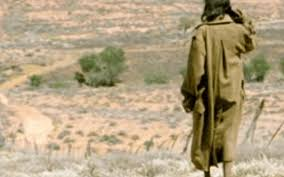 An Aussie Expedition Rabbit Proof Fence 2002 Film Trap