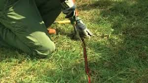 Step 4 Burying The Wire Extreme Electric Dog Fence 2020 Diy Kits