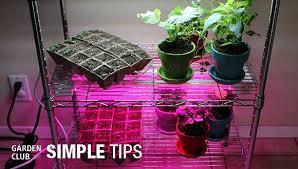 create a diy indoor grow light system