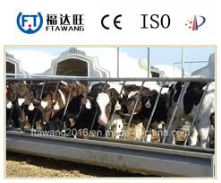 China Horse Fencing Cattle Fence Sheep Fencing Livestock Feeder China Fencing Wire