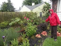 rainwater gardens preventing toxic