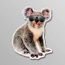 Amazon Com More Shiz Koala Bear Sunglasses Vinyl Decal Sticker Car Truck Van Suv Window Wall Cup Laptop 5 Inch Decal Mks1445 Automotive