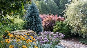 joe gardener organic gardening like