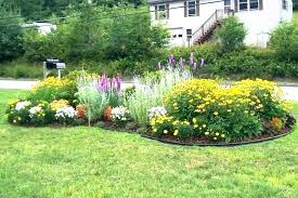 flower garden ideas summer border
