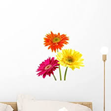 Amazon Com Wallmonkeys Colorful Gerber Daisies Wall Decal Peel And Stick Floral Graphic 18 In W X 12 In H Wm261616 Furniture Decor